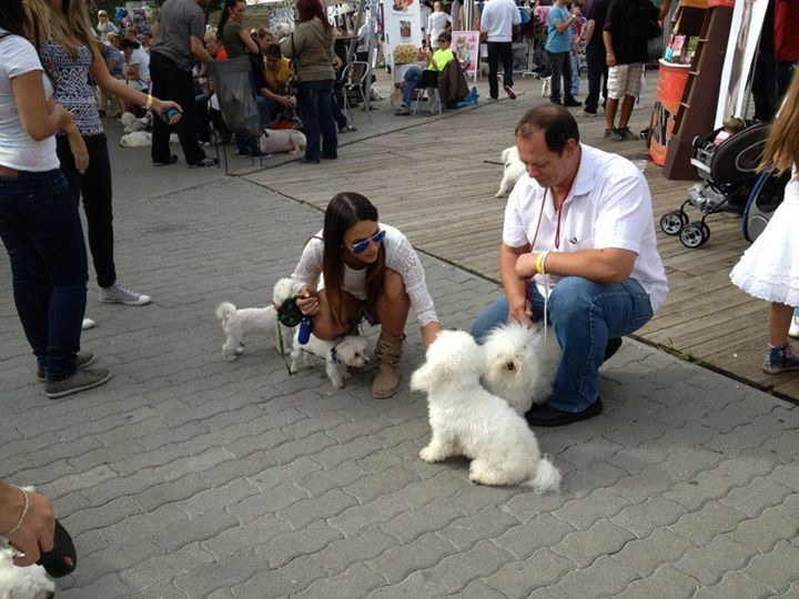 White DOG Party!!! Szeptember 15. 003